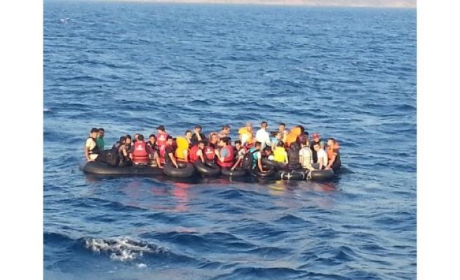 Bin 799 kaçak son anda kurtarıldı