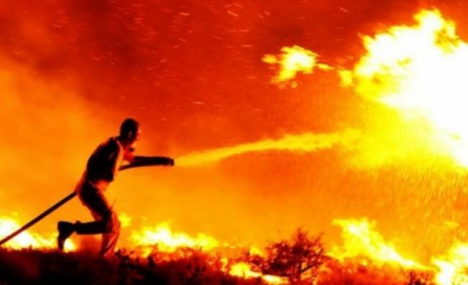 Bodrum'daki yangın korkuttu