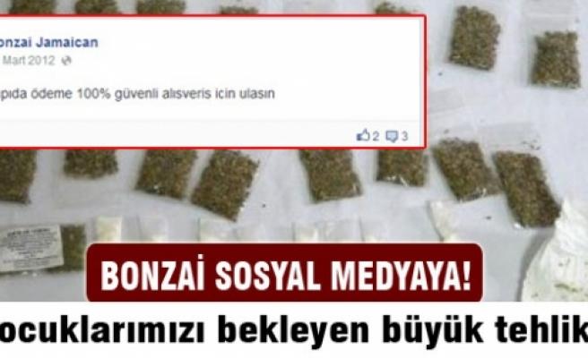 Bonzai sosyal medyada!