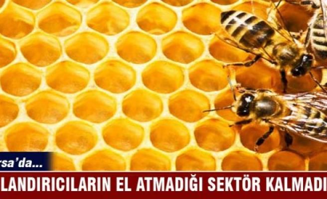 Bursa'da dolandırıcıların el atmadığı sektör kalmadı