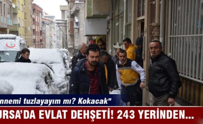 Bursa'da evlat vahşeti! Annesini 243 yerinden bıçakladı