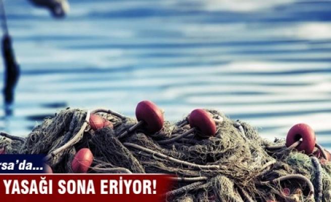 Bursa'da yasak sona eriyor!