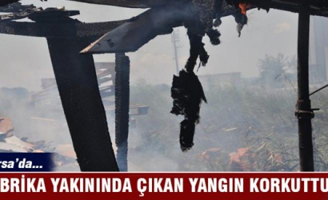 Bursa Karacabey'deki yangın korkuttu