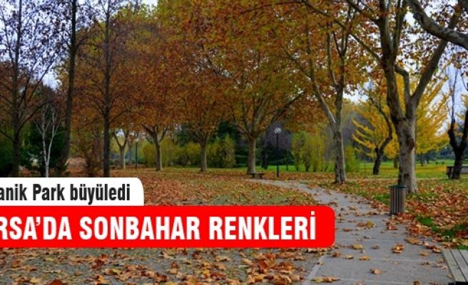 Bursa'dan sonbahar manzaraları