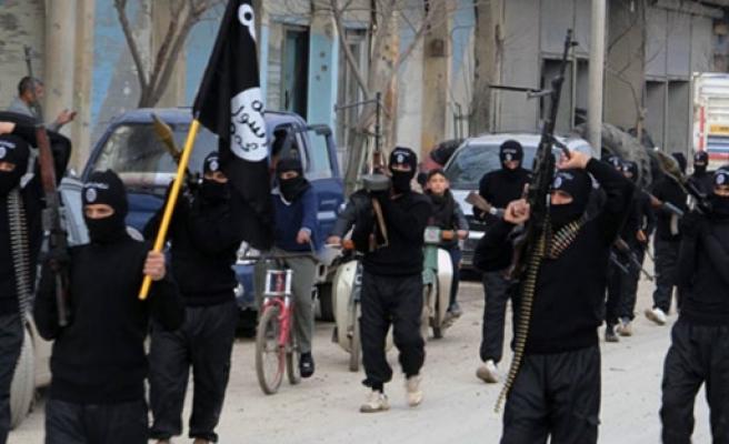 IŞİD militanı Türkiye'ye gelerek...