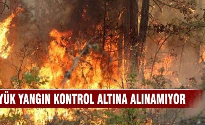 Karabük'te büyük orman yangını
