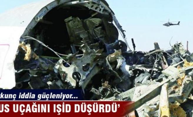 Rus uçağını büyük ihtimalle IŞİD düşürdü