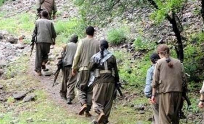 Şırnak'ta 8 terörist teslim oldu!
