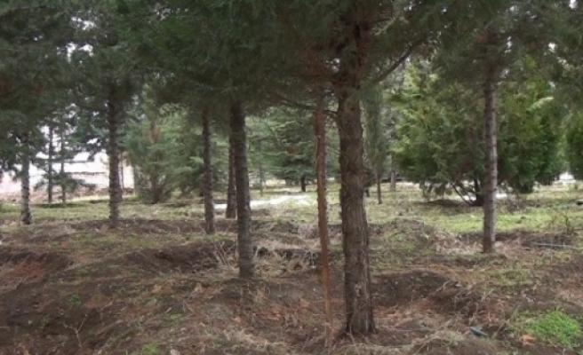 Yazıkonak Beldesi'nde Doğa Ve Çevre Koruma Derneği Kuruldu