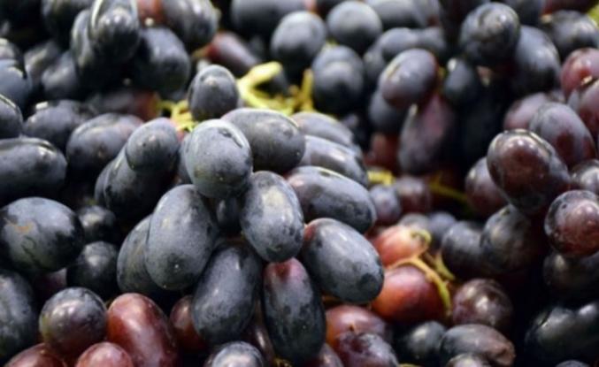 Bu meyveler kan şekerini düşürüyor, kanseri önlüyor!