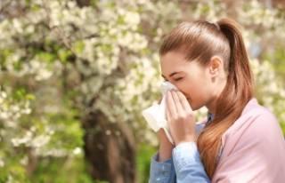 Bursalılar dikkat polen alerjiniz varsa...