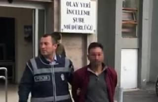 PKK operasyonu: 11 gözaltı
