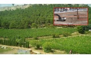 Mahkemeden Atatürk Orman Çiftliği kararı