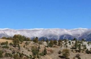 Yılın ilk karı Uludağ'a düştü!