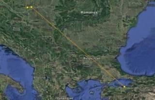 11 aylık yavru leylek 3 bin kilometre katederek Bursa'ya...