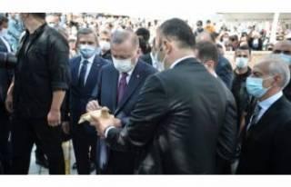 Cumhurbaşkanı Erdoğan, kuş yemi satıcısının...
