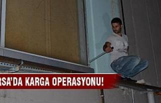 Bursa'da karga operasyonu!