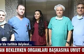 Bursa'da talihin böylesi...