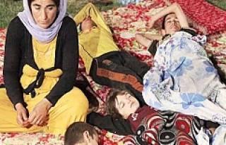 IŞİD'e göre tecavüz ibadet!