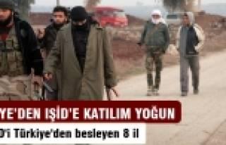 IŞİD'İ Türkiye'den besleyen 8 il