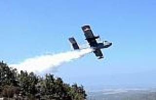 Madra Dağı'nda Orman Yangını Çikti