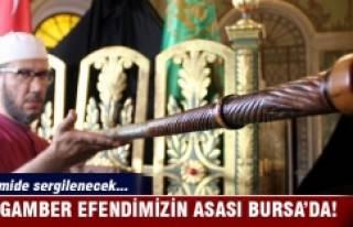 Peygamber efendimizin asası Bursa'da