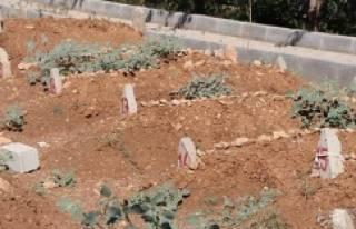 PKK'lı teröristlerin cenazesi kimsesizler mezarlığına...