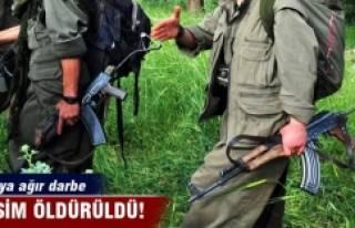PKK'ya ağır darbe! O isim öldürüldü