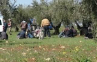 Suriye sınırında asker ateş açtı
