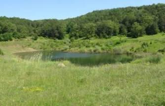 Bursa'da 11 yıl önce kuruyan göl yeniden canlandı