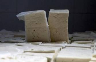 Peynir ve sütle ilgili önemli uyarı!