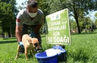 Osmangazi'den can dostlara yardım eli