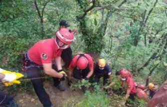 Bursa'da dengesini kaybedip uçuruma düşen kişi kurtarıldı