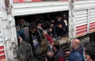 TIR'da balık istifi 114 kaçak göçmen taşınmasına 3 tutuklama!