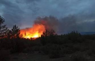 Muğla'da, 5'er dakika arayla ormanlık iki alanda yangın!