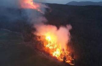 Muğla'daki orman yangınlarında 'sabotaj' şüphesi!