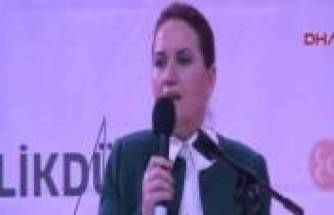 Meral Akşener, Başbakan'a meydan okudu!