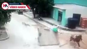 Motorsiklet at arabasına çarptı: 1 ölü